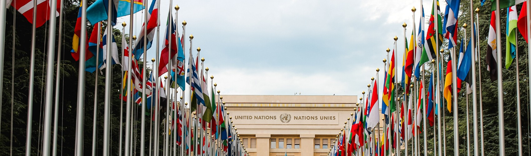 国際機関の画像